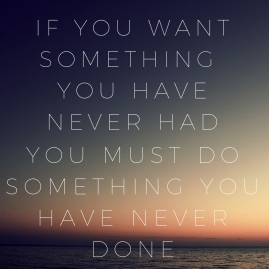 if you want something you have never had